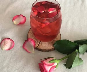 rose, drink, and red image