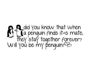 penguin, love, and forever image