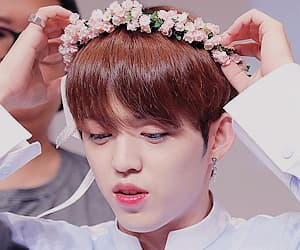 Seventeen, anime boy cute, and s.coups image