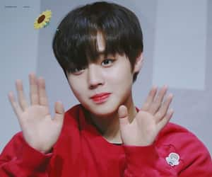 jihoon, wanna one, and park jihoon image
