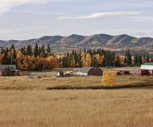 barn, canada, and country image