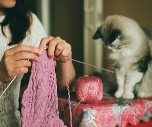 knit and knitting image