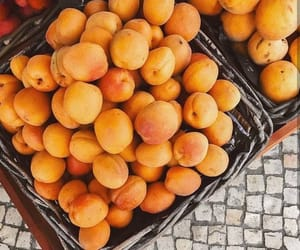 aesthetic, apricots, and healthy image