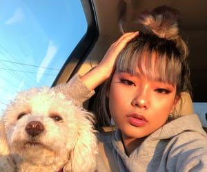 aesthetic, dog, and female image