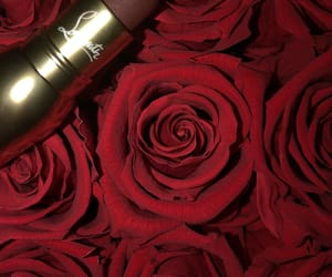 flowers, lipstick, and makeup image