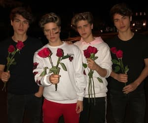 boy, romantic, and rose image
