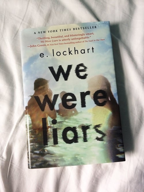 book and we were liars image