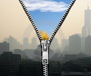 breathe, image, and city image