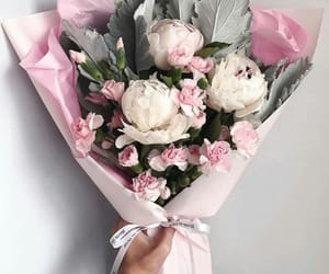 beautiful, flower, and peonies image