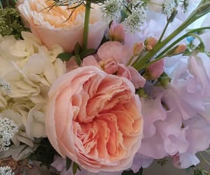 aesthetic, bouquet, and floral image