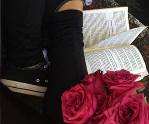 books, libros, and rosas image