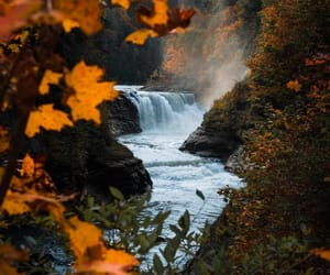 autumn, leaves, and waterfall image