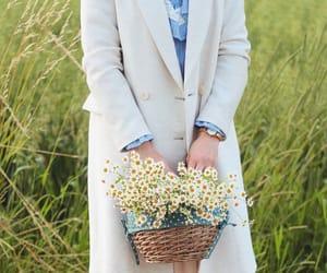 beautiful, chamomile, and girl image