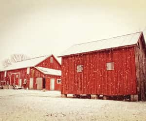 barn, farm, and country living image