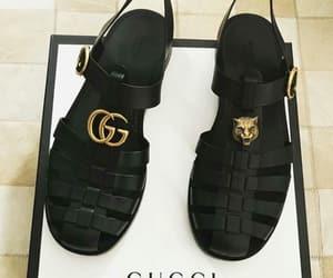 gucci and gucci gang image