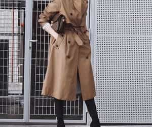 camel and trench coat image