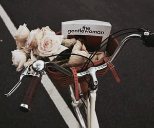 bike, flowers, and magazine image