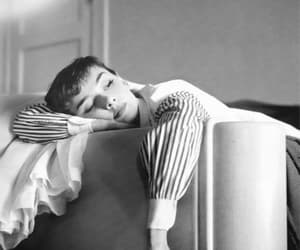 audrey hepburn, b&w, and old hollywood image