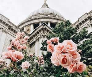 architecture, flowers, and pink image