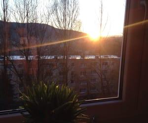 morning, sun, and window image