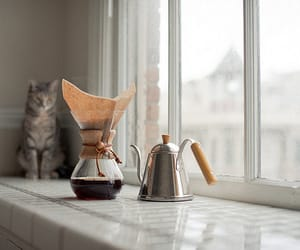chemex, nikon D700, and The Window image