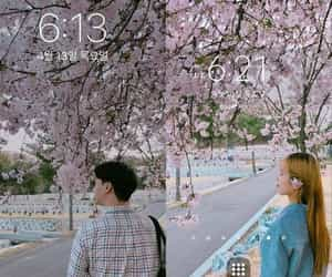 cherry blossom, couple, and lovely image