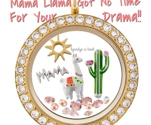 beautiful, cacti, and charms image