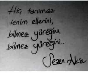 tumblr, sezen aksu, and türkçe image