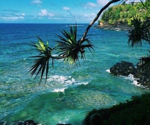 beach, summer, and tropical image