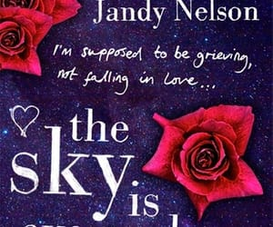 the sky is everywhere and jandy nelson image