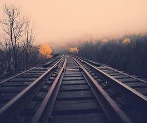 nature, rails, and train image
