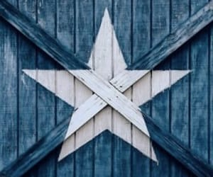 blue, star, and white image