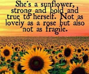 quotes and sunflower image