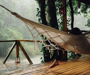 rain, nature, and relax image