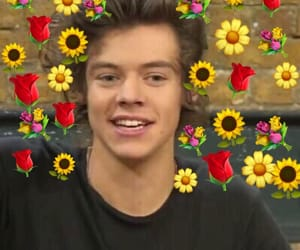 flowers, meme, and Harry Styles image