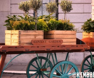 covent garden, ©, and kimboeckx image
