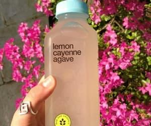 drink, flowers, and lemon image