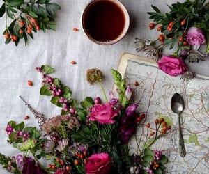 Image by Maddi