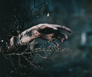 hand, dark, and photography image