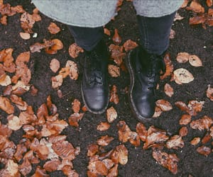 autumn, legs, and martens image