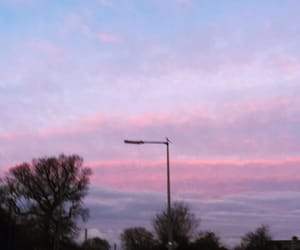 morning, pink, and purple image