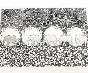 animal, illustration, and art image