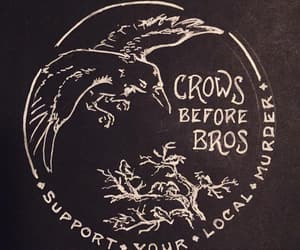 crow, black, and goth image
