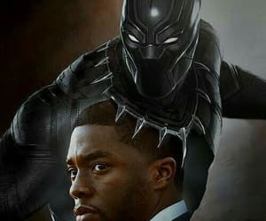 Marvel, black panther, and t'challa image