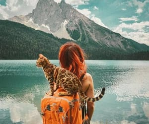 cat, girl, and travel image