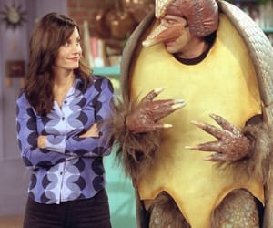 armadillo, monica, and ross image
