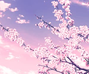 pastel, anime, and pink image