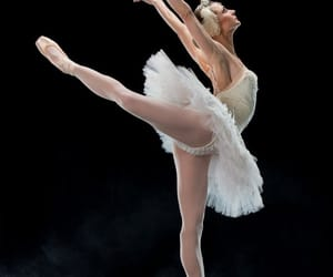 swan lake and chandra kuykendall image