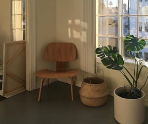 plants, indie, and interior image