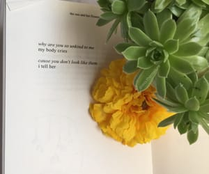 book, flower, and minimalism image